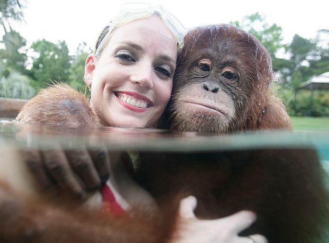 Что связано с обезьянами