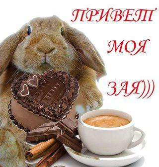привлекает фото доброе утро зая жители
