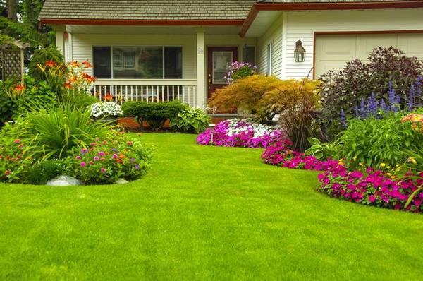 Лужайка перед домом своими руками